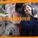 Dove me ne vado a vivere? Sir Koala Londinese e il suo giro del mondo!
